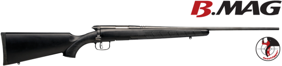 Photo of Savage Arms .17 WSM